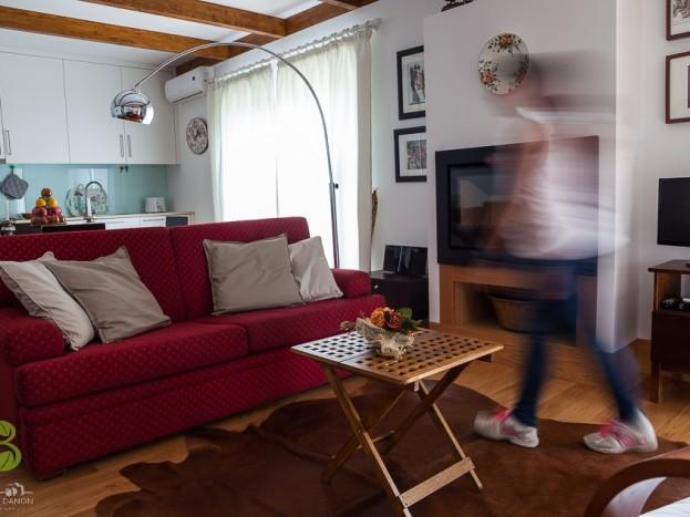 Casa do Sobreiro - sala de estar