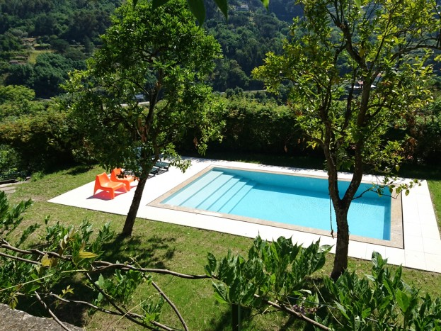 piscina raposeira com relva