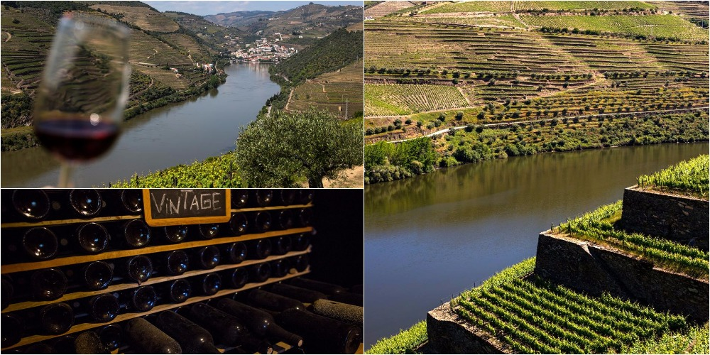 Enjoy Douro Wine Tour